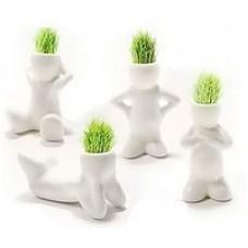 Травянчики одинарные белые