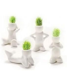 Травянчики одинарные белые, , 48грн, Травянчики одинарные белые, , Травянчики